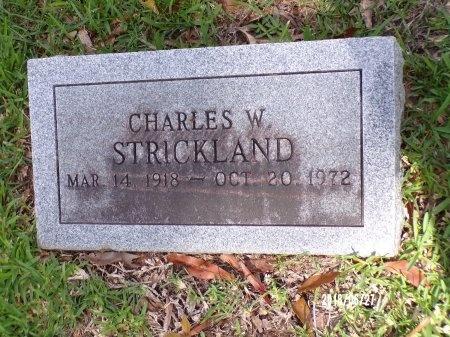 STRICKLAND, CHARLES W - St. Tammany County, Louisiana | CHARLES W STRICKLAND - Louisiana Gravestone Photos