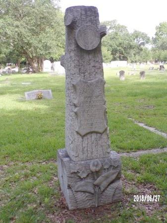 NEWMAN VIGIER, SUSIE J - St. Tammany County, Louisiana | SUSIE J NEWMAN VIGIER - Louisiana Gravestone Photos