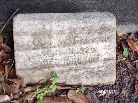 "WAGELAAR, THEODORE ""TEDDY"" - St. Tammany County, Louisiana | THEODORE ""TEDDY"" WAGELAAR - Louisiana Gravestone Photos"