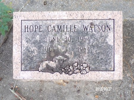 WATSON, HOPE CAMILLE - St. Tammany County, Louisiana | HOPE CAMILLE WATSON - Louisiana Gravestone Photos