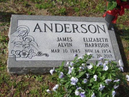 ANDERSON, ELIZABETH - Tangipahoa County, Louisiana | ELIZABETH ANDERSON - Louisiana Gravestone Photos