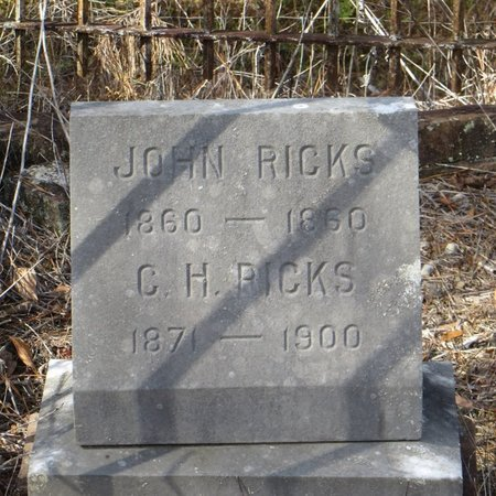RICKS, JOHN - Tangipahoa County, Louisiana | JOHN RICKS - Louisiana Gravestone Photos