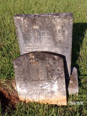 BEARDEN, MARY FRANCES  - Union County, Louisiana   MARY FRANCES  BEARDEN - Louisiana Gravestone Photos