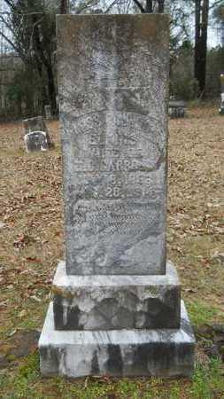 ELKINS CARROLL, PAULINA - Union County, Louisiana | PAULINA ELKINS CARROLL - Louisiana Gravestone Photos
