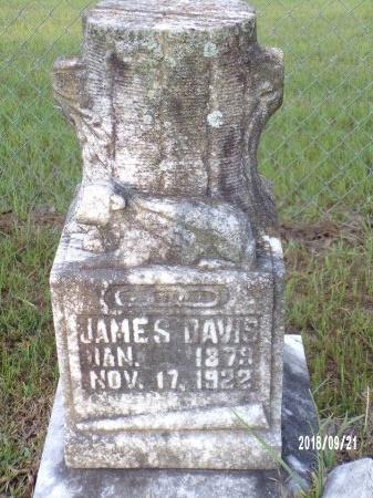 DAVIS, JAMES - Union County, Louisiana | JAMES DAVIS - Louisiana Gravestone Photos