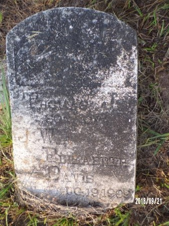 DAVIS, THOMAS J - Union County, Louisiana   THOMAS J DAVIS - Louisiana Gravestone Photos