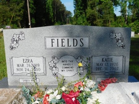 FIELDS, EZRA - Union County, Louisiana   EZRA FIELDS - Louisiana Gravestone Photos