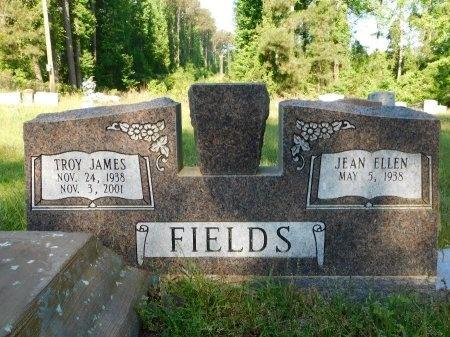 FIELDS, TROY JAMES - Union County, Louisiana   TROY JAMES FIELDS - Louisiana Gravestone Photos