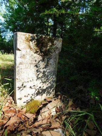 HICKS, LENA (CLOSE UP) - Union County, Louisiana | LENA (CLOSE UP) HICKS - Louisiana Gravestone Photos