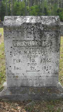 HOLLIS, NANCY CAROLINE - Union County, Louisiana   NANCY CAROLINE HOLLIS - Louisiana Gravestone Photos