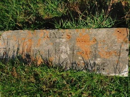 JONES, WILL D - Union County, Louisiana   WILL D JONES - Louisiana Gravestone Photos
