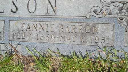NELSON, FANNIE (CLOSE UP) - Union County, Louisiana | FANNIE (CLOSE UP) NELSON - Louisiana Gravestone Photos