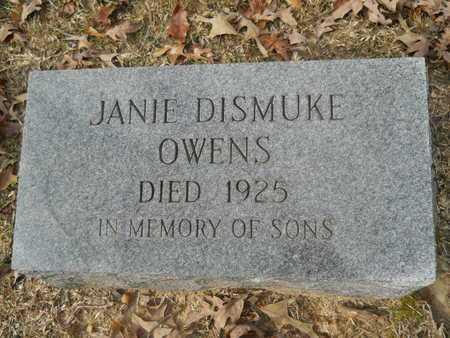OWENS, JANIE - Union County, Louisiana | JANIE OWENS - Louisiana Gravestone Photos