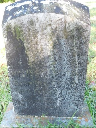 RADFORD, WILLIE ANN - Union County, Louisiana   WILLIE ANN RADFORD - Louisiana Gravestone Photos