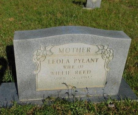 PYLANT REED, LEOLA - Union County, Louisiana | LEOLA PYLANT REED - Louisiana Gravestone Photos