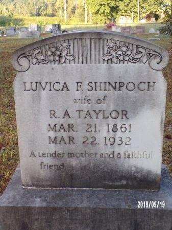 TAYLOR, LUVICA F - Union County, Louisiana   LUVICA F TAYLOR - Louisiana Gravestone Photos