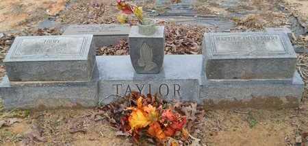 TAYLOR, FIRMY - Union County, Louisiana | FIRMY TAYLOR - Louisiana Gravestone Photos