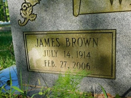 WATERS, JAMES BROWN (CLOSE UP) - Union County, Louisiana | JAMES BROWN (CLOSE UP) WATERS - Louisiana Gravestone Photos