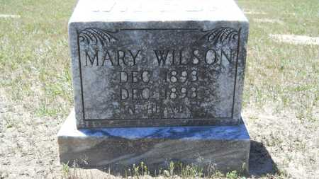 WILSON, MARY - Union County, Louisiana | MARY WILSON - Louisiana Gravestone Photos