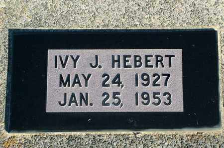 HEBERT, IVY - Vermilion County, Louisiana   IVY HEBERT - Louisiana Gravestone Photos