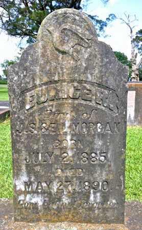 MORGAN, EUNICE R - Vermilion County, Louisiana   EUNICE R MORGAN - Louisiana Gravestone Photos