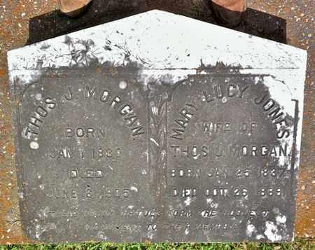 MORGAN, MARY LUCY - Vermilion County, Louisiana | MARY LUCY MORGAN - Louisiana Gravestone Photos