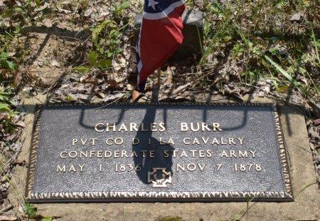 BURR, CHARLES B (VETERAN CSA) - Vernon County, Louisiana | CHARLES B (VETERAN CSA) BURR - Louisiana Gravestone Photos