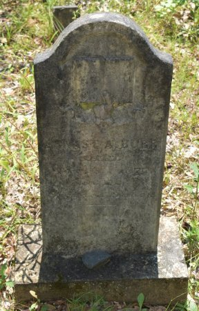 BURR, ERNAST A - Vernon County, Louisiana | ERNAST A BURR - Louisiana Gravestone Photos