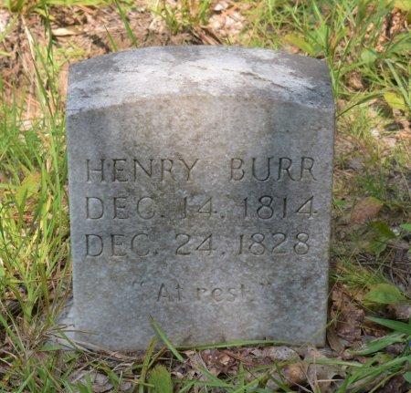 BURR, HENRY - Vernon County, Louisiana | HENRY BURR - Louisiana Gravestone Photos