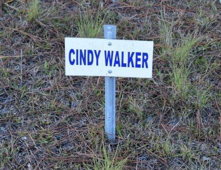 WALKER, CINDY - Vernon County, Louisiana | CINDY WALKER - Louisiana Gravestone Photos