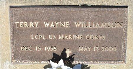 WILLIAMSON, TERRY WAYNE (VETERAN) - Vernon County, Louisiana   TERRY WAYNE (VETERAN) WILLIAMSON - Louisiana Gravestone Photos