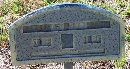 BALL, NOEL, SR - Washington County, Louisiana | NOEL, SR BALL - Louisiana Gravestone Photos