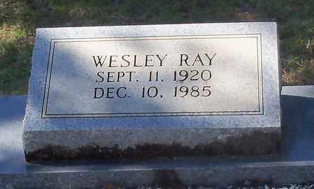 CRAIN  , WESLEY RAY  (CLOSE UP) - Washington County, Louisiana | WESLEY RAY  (CLOSE UP) CRAIN   - Louisiana Gravestone Photos
