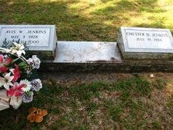 JENKINS, AVIS W - Washington County, Louisiana | AVIS W JENKINS - Louisiana Gravestone Photos