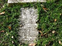 JENKINS, DANIEL LEANDER - Washington County, Louisiana   DANIEL LEANDER JENKINS - Louisiana Gravestone Photos
