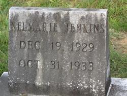 JENKINS, NEL MARIE - Washington County, Louisiana | NEL MARIE JENKINS - Louisiana Gravestone Photos