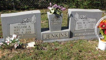 JENKINS, ADA MAE - Washington County, Louisiana | ADA MAE JENKINS - Louisiana Gravestone Photos