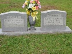 JENKINS, WILLIS WILDER - Washington County, Louisiana | WILLIS WILDER JENKINS - Louisiana Gravestone Photos