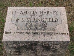 STRINGFIELD, LAURA AMELIA - Washington County, Louisiana   LAURA AMELIA STRINGFIELD - Louisiana Gravestone Photos
