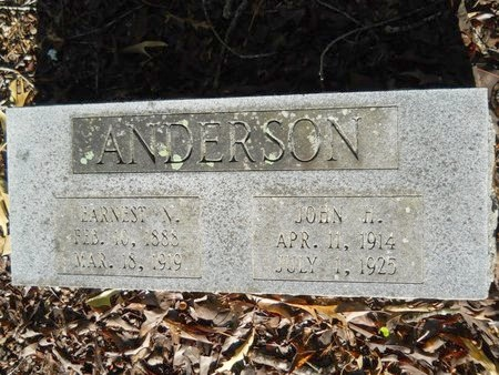 ANDERSON, JOHN HENRY - Webster County, Louisiana | JOHN HENRY ANDERSON - Louisiana Gravestone Photos