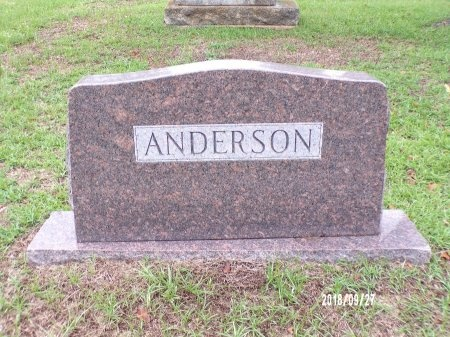 ANDERSON, FAMILY PLOT - Webster County, Louisiana | FAMILY PLOT ANDERSON - Louisiana Gravestone Photos
