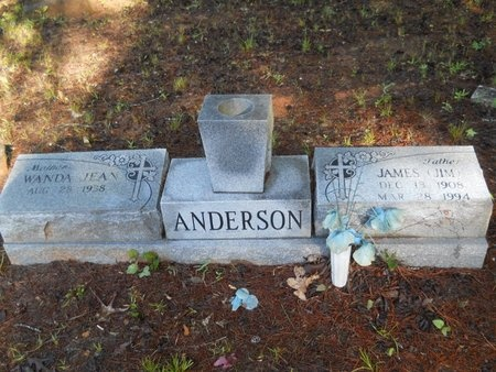 "ANDERSON, JAMES ""JIM"" - Webster County, Louisiana   JAMES ""JIM"" ANDERSON - Louisiana Gravestone Photos"