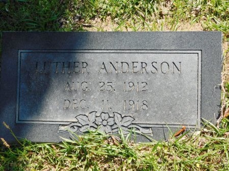 ANDERSON, LUTHER - Webster County, Louisiana | LUTHER ANDERSON - Louisiana Gravestone Photos