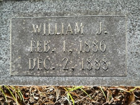 ANDERSON, WILLIAM J (CLOSE UP) - Webster County, Louisiana | WILLIAM J (CLOSE UP) ANDERSON - Louisiana Gravestone Photos