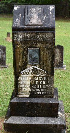 COLE, STELLA - Webster County, Louisiana | STELLA COLE - Louisiana Gravestone Photos