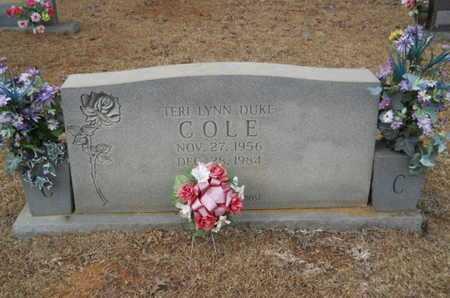 COLE, TERI LYNN - Webster County, Louisiana | TERI LYNN COLE - Louisiana Gravestone Photos