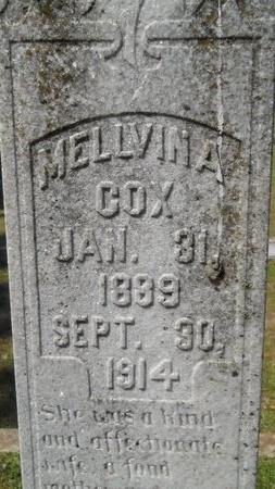 COX, MELLVINA (CLOSE UP) - Webster County, Louisiana | MELLVINA (CLOSE UP) COX - Louisiana Gravestone Photos