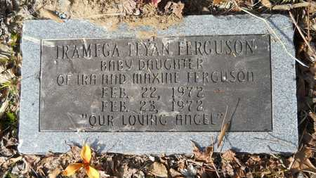 FERGUSON, IRAMEGA TEYAN - Webster County, Louisiana | IRAMEGA TEYAN FERGUSON - Louisiana Gravestone Photos