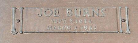 GREEN, JOE BURNS (CLOSE UP) - Webster County, Louisiana   JOE BURNS (CLOSE UP) GREEN - Louisiana Gravestone Photos