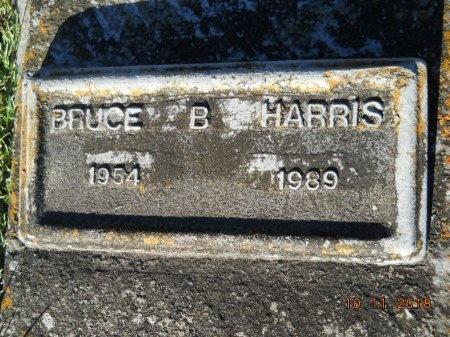 HARRIS, BRUCE B - Webster County, Louisiana | BRUCE B HARRIS - Louisiana Gravestone Photos